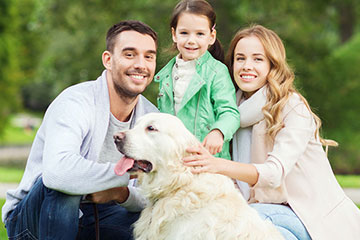 family life assurance