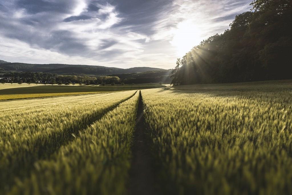 farm insurance brokers ireland